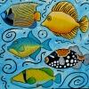 poissons-caraibes-72
